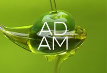Adam Oil